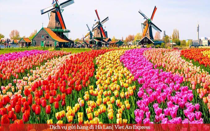 DỊch vụ gửi hàng đi Hà Lan